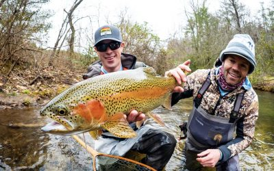What to bring on a guided fly fishing trip